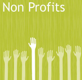 non_profits